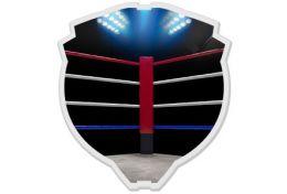 Akryl - boks - Victory Trofea